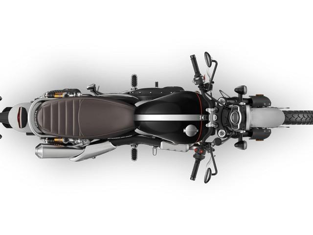 2019 Triumph scrambler XC XE